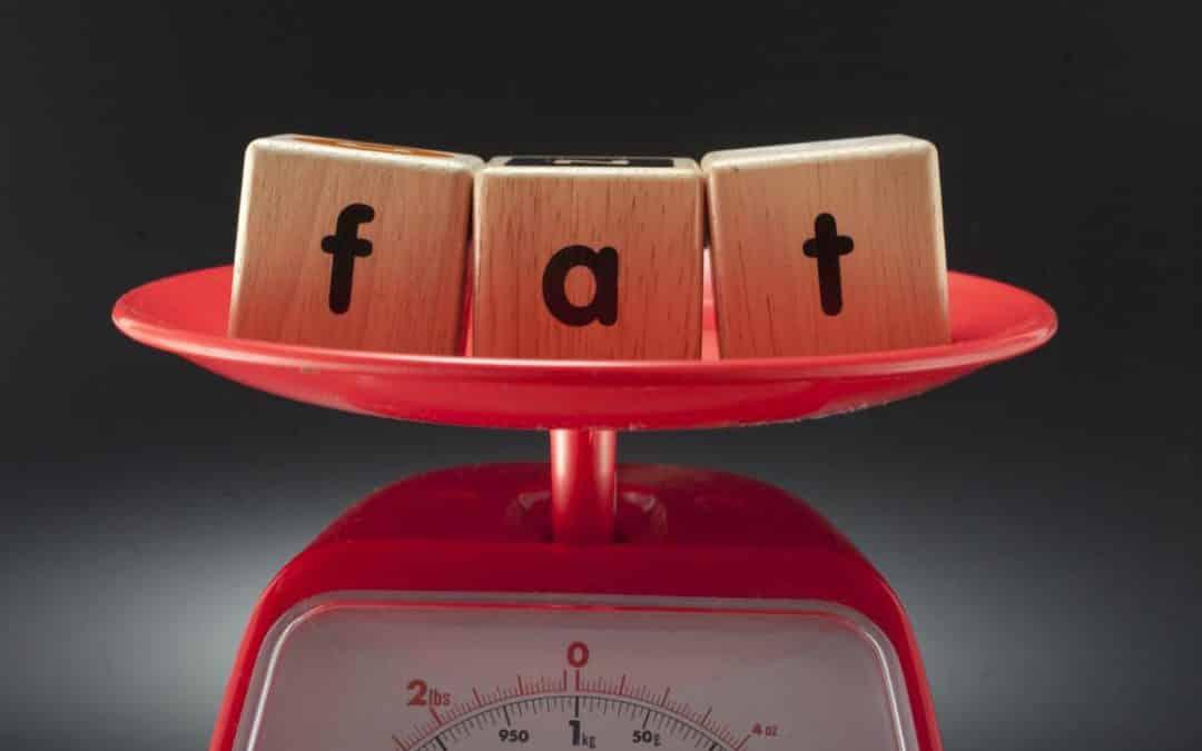 Wie fett ist fettarm? Das Einmaleins der Lightprodukte